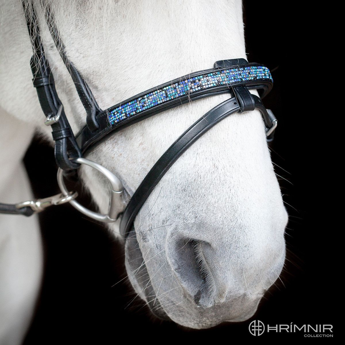 Flash noseband Blue Lagoon