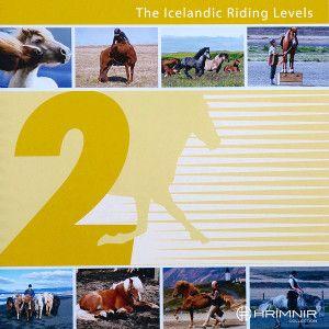 Postcard Icelandic Horse Name *Grettir A6