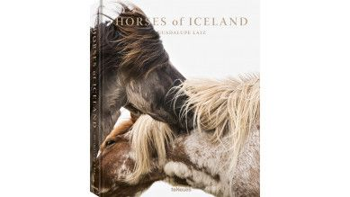 Horses of Iceland - Guadalupe Liaz