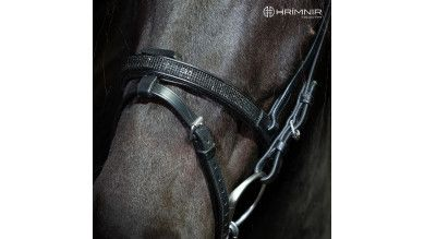 Flash noseband Lava
