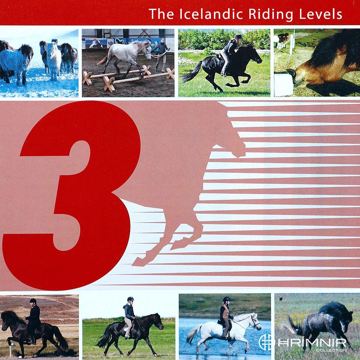 Isländisches Reitabzeichen 3 - Englisch
