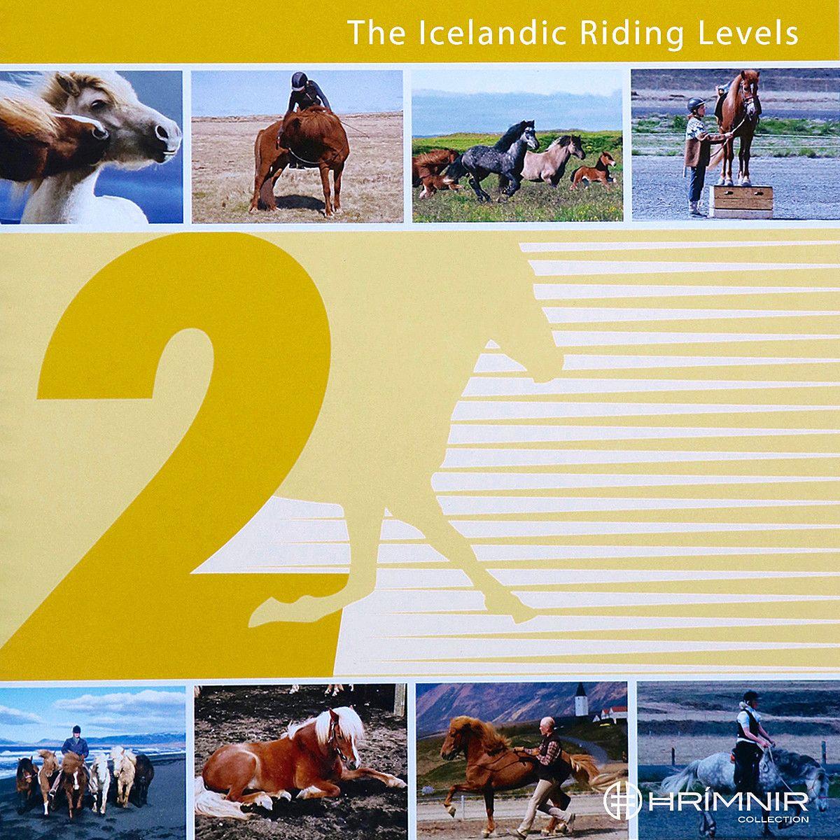 Isländisches Reitabzeichen 2 - Englisch