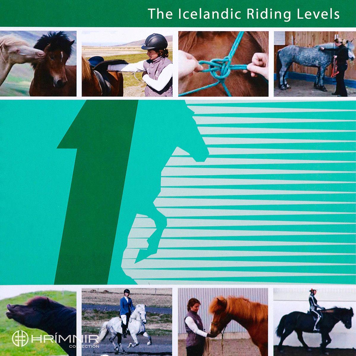 Isländisches Reitabzeichen 1 - Englisch