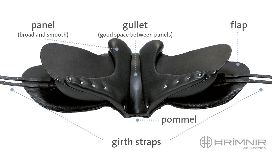 saddle parts from below